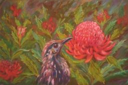 Yvonne Ward - The Honeyeater in Canberra