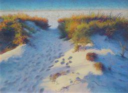 Linda O'Brien - The Softening of Light